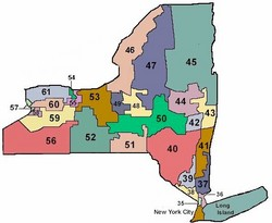 ny-senate-map.jpg